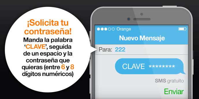 SMS clave ecare